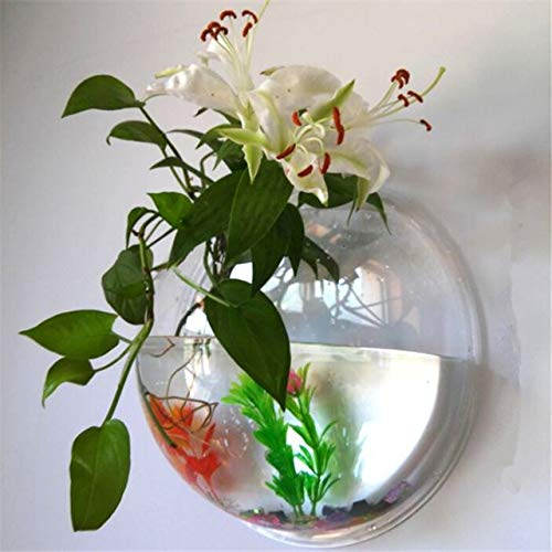 Acrylic Fish Bowl Wall Hanging Aquarium Tank Aquatic Pet Supplies Pet Products Wall Mount Fish Tank for Betta fish   Clear, Diameter 15cm
