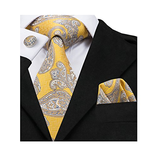 (Barry.Wang Yellow Paisley Ties Mens Woven Necktie Set Formal,Yellow Paisley,One)