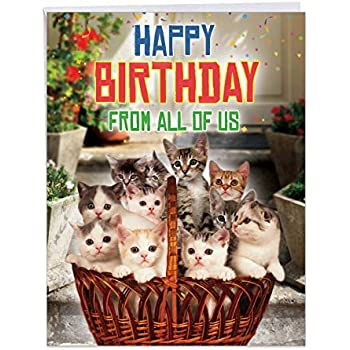 From All Us Cats Birthday Large Greeting Card With Envelope 85 X 11 Inch