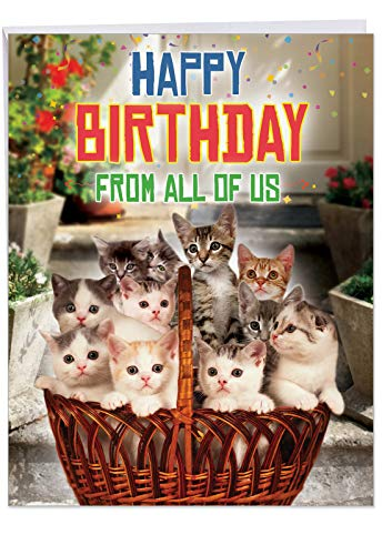 From All Us Cats Birthday' Large Greeting Card with Envelope (8.5 x 11 Inch) - Big Gift Basket of Kittens for Cat Lover, Stationery Set for Personalized Happy Bday Greetings and Wishes J5980BDG-US ()