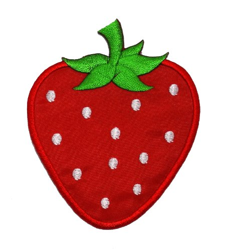 Cute Red Strawberry DIY Applique Embroidered Sew Iron on