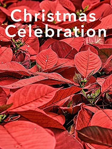 Christmas Celebration (Fireplace Venture)