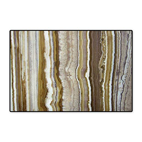 Marble,Doormat,Onyx Marble Rock Themed Vertical Lines and Blurry Stripes in Earth Color Print,Bath Mats Carpet,Mustard Brown 32