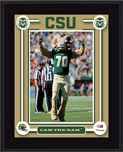 Colorado State Rams 10.5