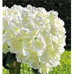 Enova-Home-Artificial-Hydrangea-Silk-Flowers-Bouquet-Flower-Arrangements-with-Vase-for-Home-Wedding-Decorationflower-with-glass-vase