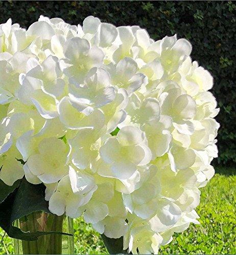 Enova Home Artificial Hydrangea Silk Flowers Bouquet Flower Arrangements with Vase for Home Wedding Decoration(flower with glass vase)