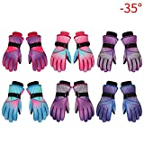 Sue Supply Children Ski Gloves,Waterproof Windproof Winter Snow Gloves Outdoor Sports Mountain Climbing, Hiking, Riding Winter Warm Cold-Proof Thickened Plush Ski Gloves for Outdoor Activities