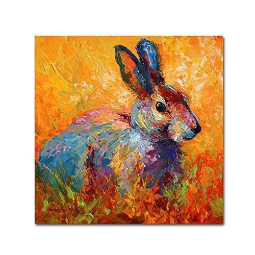 (Bunny IV by Marion Rose, 14x14-Inch Canvas Wall Art)