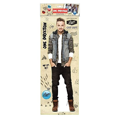One Direction Liam Desktop Standee NEW 2014 by Mask-arade