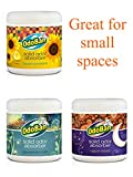 OdoBan Solid Odor Absorbers for Home and Small Spaces