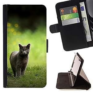 Momo Phone Case / Flip Funda de Cuero Case Cover - Británico de Pelo Corto;;;;;;;; - LG G4