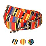 Blueberry Pet Durable Nautical Flags Inspired Designer Dog Leash 4 ft x 1'', Large, Leashes for Dogs