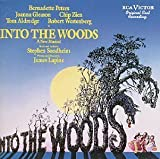 into the woods 1987 - Into the Woods (1987 Original Broadway Cast) Cast Recording Edition (1990) Audio CD