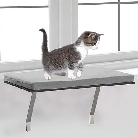 Amazon.com: Mosunx - Percha para ventana de gato, para ...