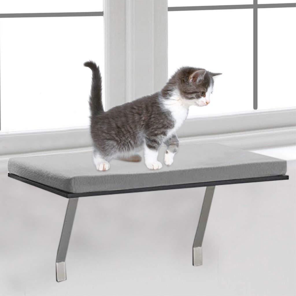 Amazing Amazon Com Pet Cat Window Seat Perch Foam Cushion Pet Inzonedesignstudio Interior Chair Design Inzonedesignstudiocom