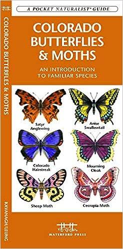 Colorado Butterflies Moths A Folding Pocket Guide To Familiar
