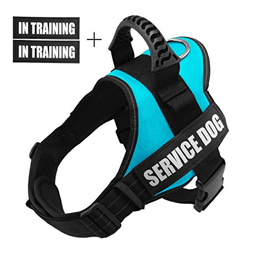 Fairwin Service Vest Dog Harness - Adjustable Nylon with Removable Reflective Patches for Service Dogs Large Medium Small Sizes (S : Chest 20