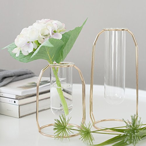 (PuTwo Vases Set of 2 Metal Flower Vase Glass Vase Planter Terrariums Gold Vases Rose Gold Vase Plant Vase Glass Vases Cylinder Vase Vases for Decor Clear Vase Decorations for)