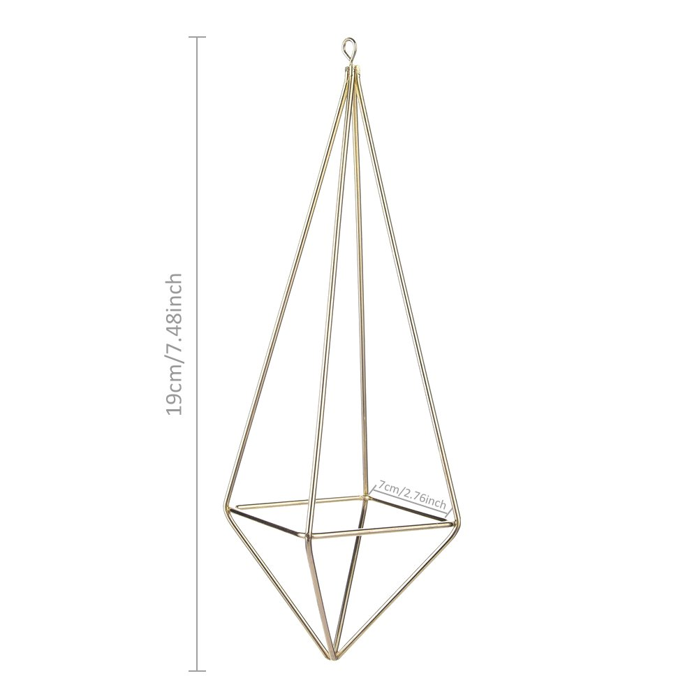 Geometrical Shaped Air Plant Rack Holder Hanging Planter Basket Wall Decor Container Without Soil for Tillandsia Air Plants Display Jannyshop