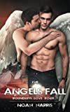 The Angels Fall (Boundless Love) (Volume 1)