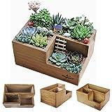Wooden Succulent Planter Boxes for Indoor House Miniature Plants, Succulents Cacti Fairy Garden Container