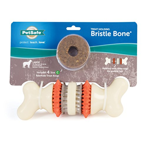PetSafe Large Sportsmen Bristle Bone Pet Chew Toy -