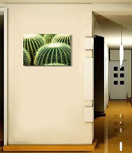 Closeup Photo of Cactus Wall Decor Wood Framed