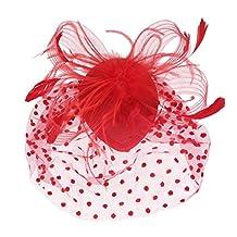 MagiDeal Wedding Bridal Bird Cage Mesh Face Veil Feather Fascinator Hair Clip Black - Red