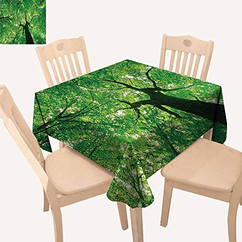 Majestic Square Two Light - UHOO2018 Fitted Polyester Tablecloth   Body of Tree Evergreen in The Nature Majestic Habitat Symbol Light Square/Rectangle Washable for Tablecloth,52x 52 inch
