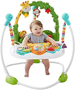 Fisher-Price, (Go Wild Jumperoo)