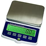 Schuler Scientific SE-3001 E Series Top Loading Balance with 0.1g Readability and 3000g Capacity