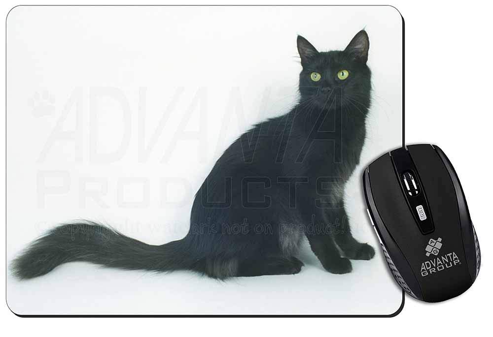 21515ebc7d0f0c Black Turkish Angora Cat Computer Mouse Mat  Pad  Amazon.co.uk  Electronics