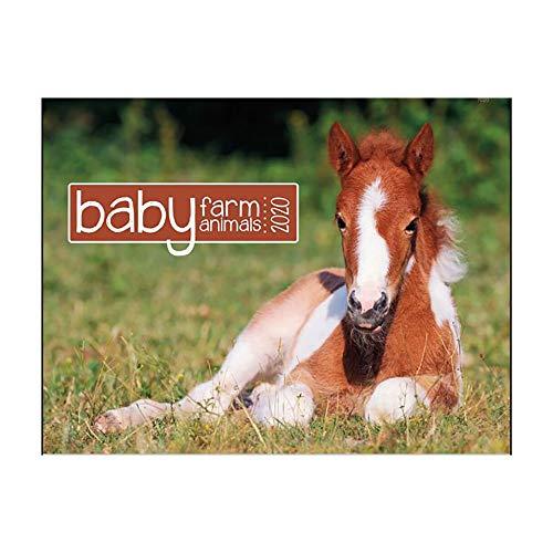 Baby Farm Animals 2020 Wall Calendar