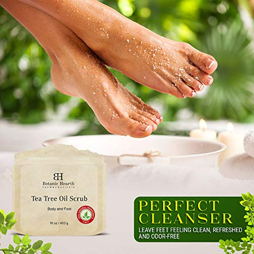 Botanic Hearth Tea Tree Scrub for Body and Foot Ð 100% Natural, Exfoliating Scrub Made with Pure Tea Tree Oil Ð…