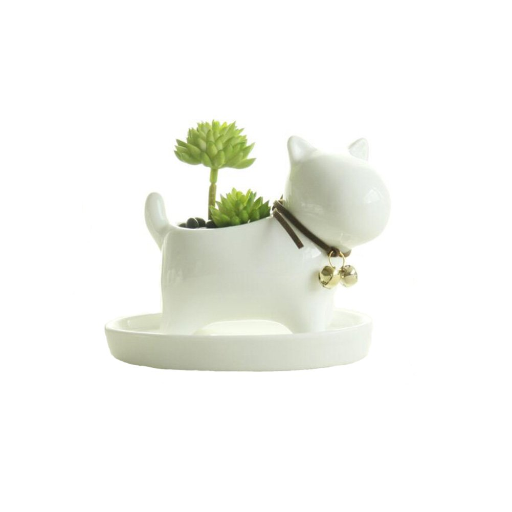 small office plant. Small Lovely White Ceramic Succulent Plant Flower Pot With Tray, Modern Simple Style Neck Office
