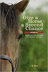 Give A Horse A Second Chance Adopting And Caring For Rescue Horses
