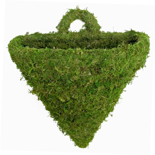 (Super Moss (55581) MossWeave - Wall Sconce, Fresh Green, Large )