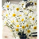 Artfen-10-Pack-Artificial-Daisy-Flowers-Flower-Arrangements-for-Home-Hotel-Office-Wedding-Party-Garden-Craft-Art-Decor-Each-Approx-21-High-No-Vase-White