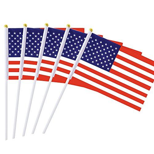 Mini American Flag - 7