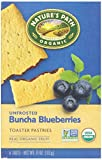 Nature's Path Organic Toaster Pastries, Blueberry Un-Frosted, 6 ct