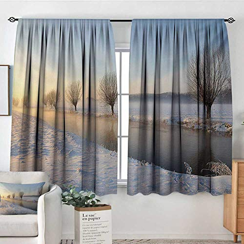 "All of better Winter Patterned Drape for Glass Door Snowy River Landscape Barren and Frosted Trees Dutch Netherlands Europe Photograph Waterproof Window Curtain 63"" W x 72"" L Multicolor"