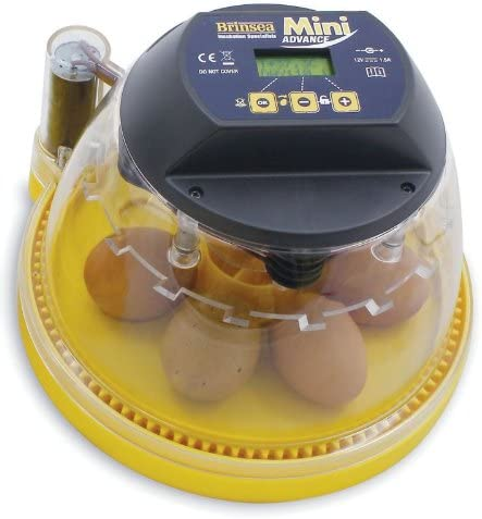Brinsea Mini Advance Hatching Egg Incubator Pet Supplies