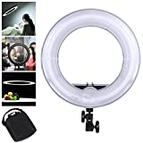 AW Professional 14'' Dimmable Ring Light 45W Fluorescent Photo Video Studio Portrait Light 5500K w/Bag