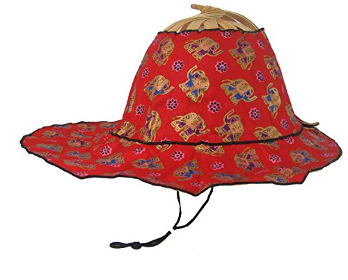Fan Hat Party Accessory (Elephant_Red) (Hat Red Invitations)
