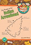 The Puzzle of the Indian Arrowhead (3) (Three Amigos)