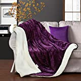MEROUS Sherpa Blanket Reversible Fuzzy Luxury Microfiber Super Soft Cozy All Season Blanket for Bed or Couch Purple Twin 90