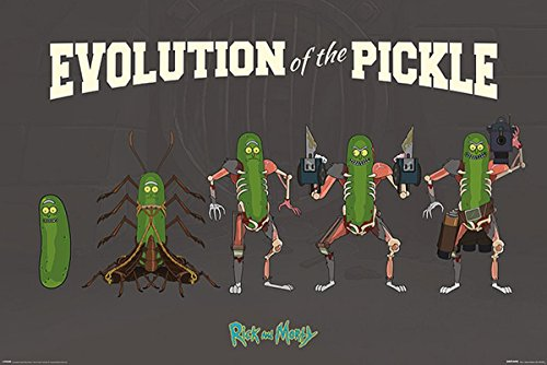 Close Up Poster Rick and Morty - Evolution of The Pickle (91,5cm x 61cm) + 2 Marcos Negros para poster con suspencion