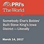 'Somebody Else's Babies' Built Steve King's Iowa District — Literally | Stephen Snyder