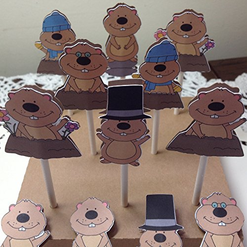 Just 12 Groundhog Day Cupcake Toppers on lollipop stick, Groundhog table decoration