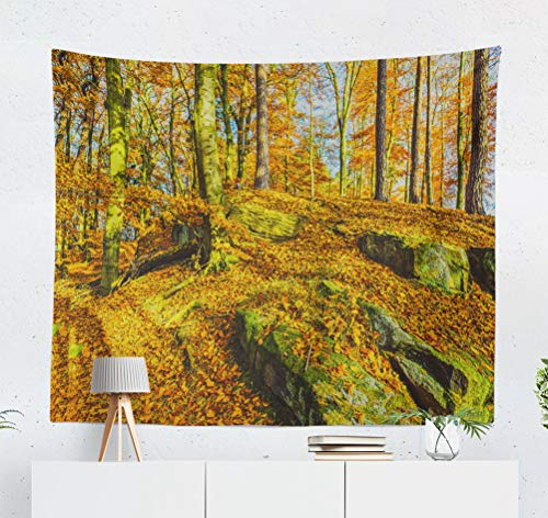 Bleach Wood Panorama Woodland - KJONG Autumn Forest Scene Woodland Trees Decorative Tapestry,50X60 Inches Wall Hanging Tapestry for Bedroom Living Room